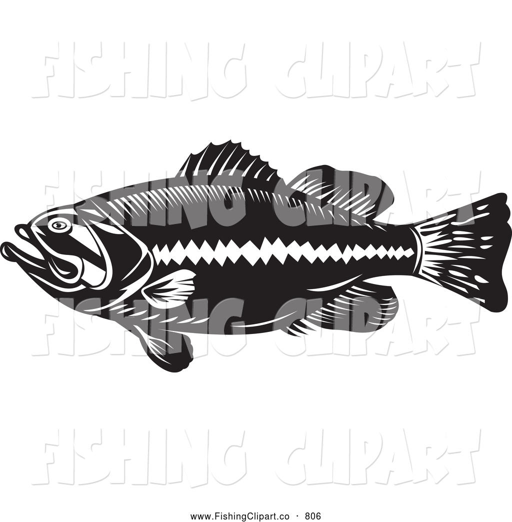 Clip Art of a Black and White Largemouth Bass Fish by patrimonio ...