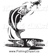 Clip Art of a Black and White Jumping Largemouth Bass Fish Trying to Catch a Frog by Patrimonio