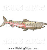 Clip Art of a Chinook Salmon by Patrimonio
