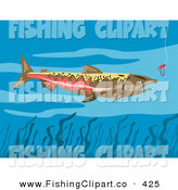 Clip Art of a Chinook Salmon near a Fishing Hook by Patrimonio