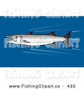 Clip Art of a Fast Swimming Barracuda Fish in Deep Water by Patrimonio