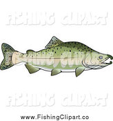 Clip Art of a Pink Salmon Fish in Profile by Vector Tradition SM