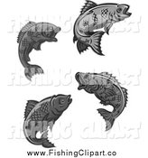 Clip Art of Four Grayscale Fish by Vector Tradition SM