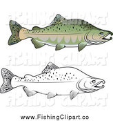 Clip Art of Lineart and Colored Pink Salmon Fish by Vector Tradition SM