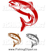 Clip Art of Red Brown and Gray Salmon Fish Jumping by Vector Tradition SM