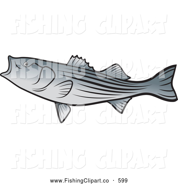 Clip Art of a Bass Fish