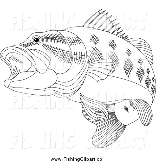 Clip Art of a Black and White Bass Fish