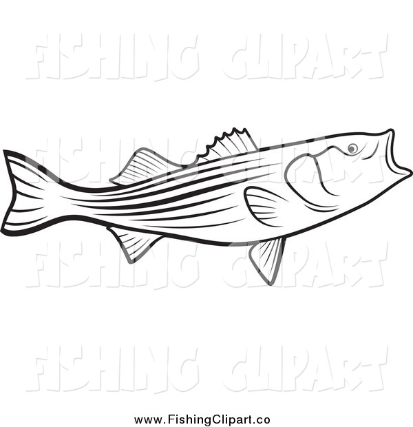 Clip Art of a Black and White Bass Fish with an Open Mouth
