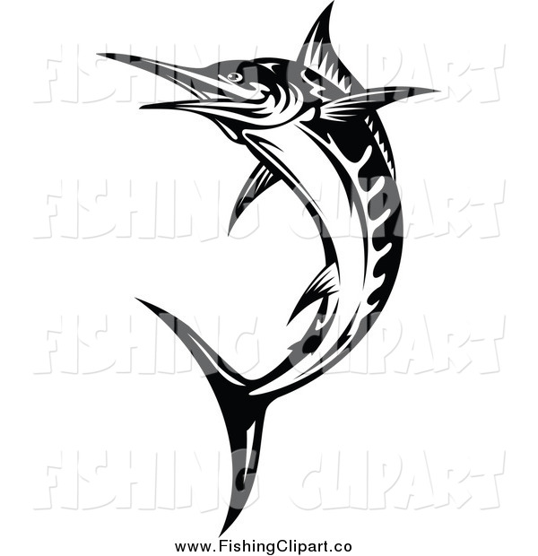 Clip Art of a Black and White Billfish Jumping