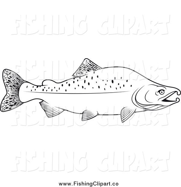Clip Art of a Black and White Humpback Salmon