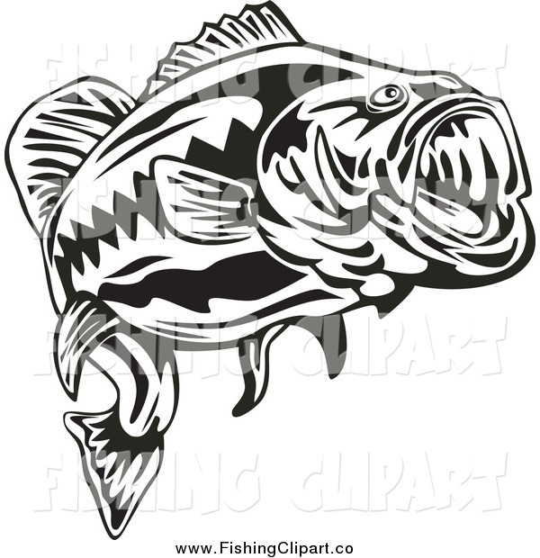Clip Art of a Black and White Largemouth Bass Fish