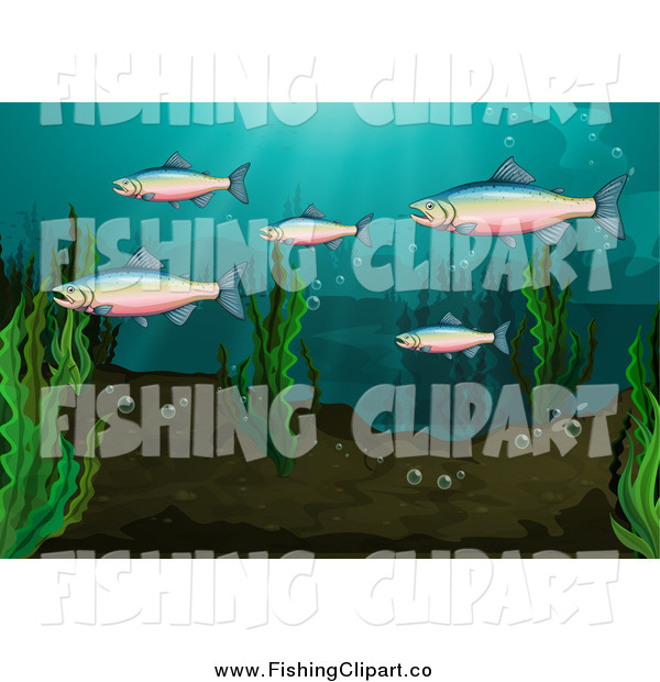 Clip Art of a Rainbow Trout Group Underwater