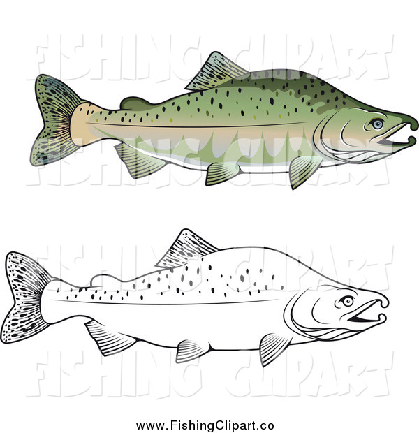 Clip Art of Lineart and Colored Pink Salmon Fish